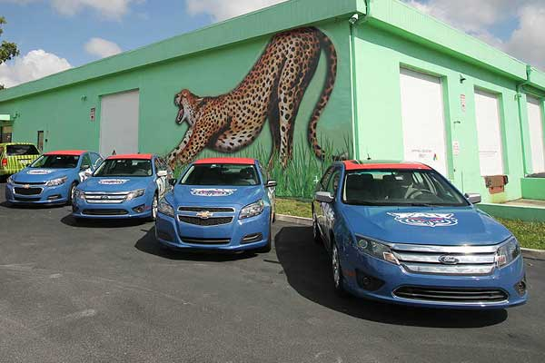 Vehicle Wraps Broward County